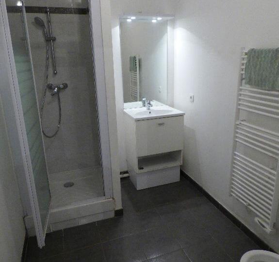 appartement a louer alfortville: 2 pièces 45 m², salle d'eau avec wc