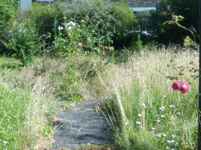 agence immo maisons alfort: maison 4 pièces 70 m², beau jardin, surface 344 m²