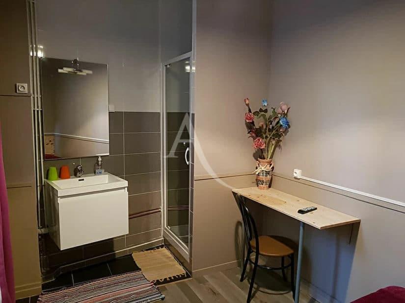 agence immobiliere alfortville: immeuble entier 20 pièces 500 m², salle d'eau du f5