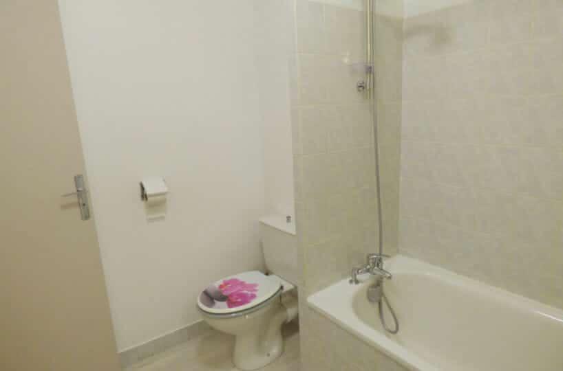 appartement à louer maisons alfort: studio 36 m² - aperçu salle de bains et wc