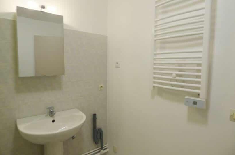 appartement a louer maison alfort: studio 36 m² - aperçu salle de bains