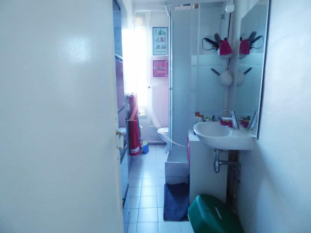 immo alfortville: 3 pièces 54 m², salle d'eau avec douche et wc, rangements