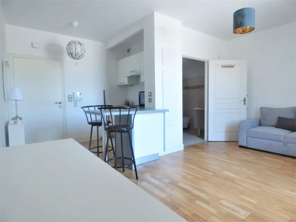 agence immobiliere maisons-alfort: studio 25 m², belle pièce à vivre avec coin cuisine aménagée et équipée, parking