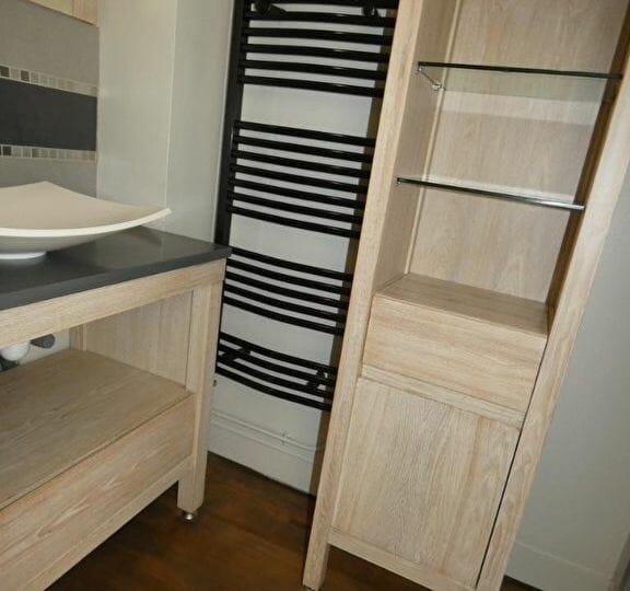 l adresse alfortville - maison 3 pièces 41 m² à louer - aperçu salle d'eau, vasque et rangements