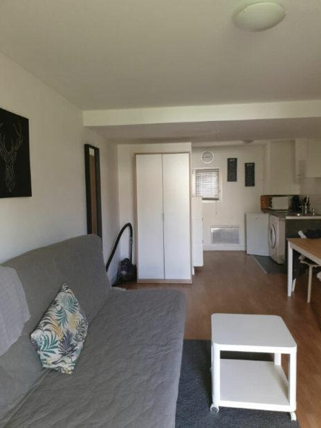 location maisons alfort: studio meublé, pièce à vivre, coin cuisine équipée, rdc, jardin