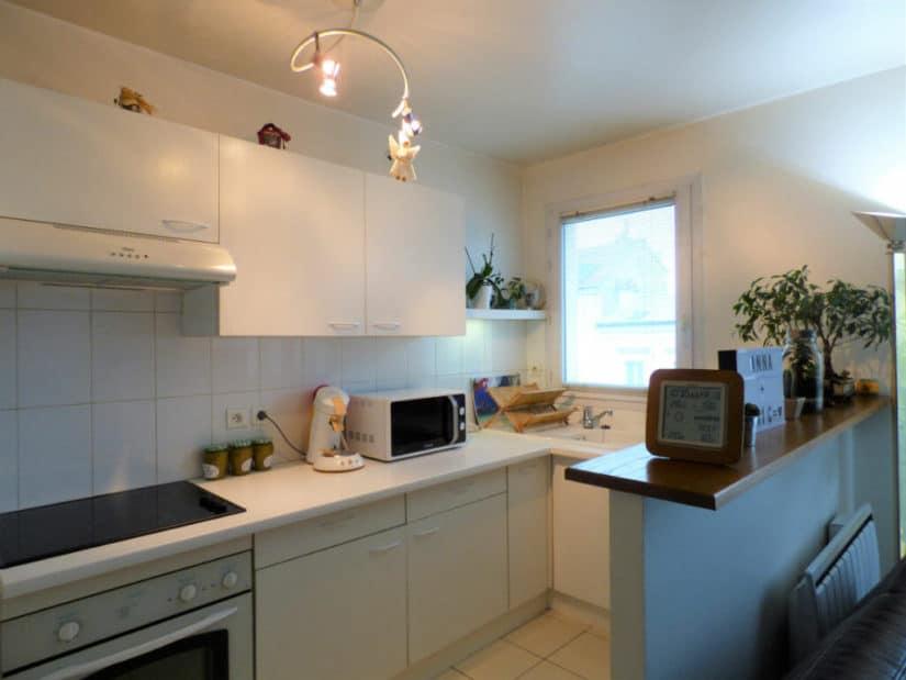 immobilier a louer: 2 pièces 44 m², cuisine américaine aménagée et équipée, saint-maurice