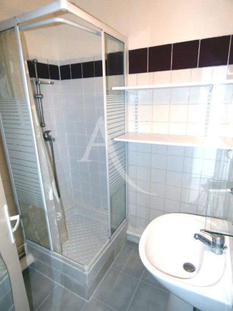 louer appartement charenton-le-pont: 1 pièce 16 m², salle de bain avec douche et wc
