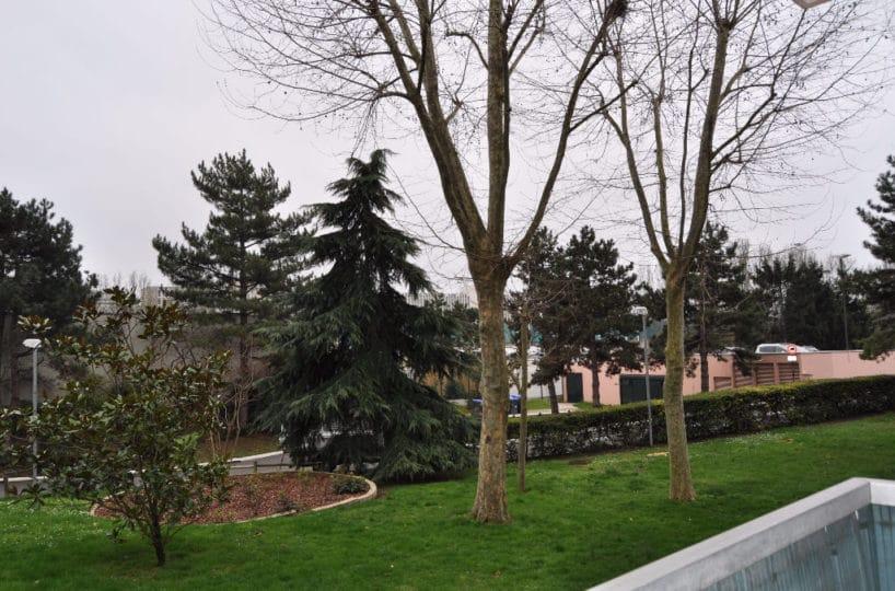 immo maisons alfort: appartement 3 pièces 60 m², vue du balcon, agréable sur parc