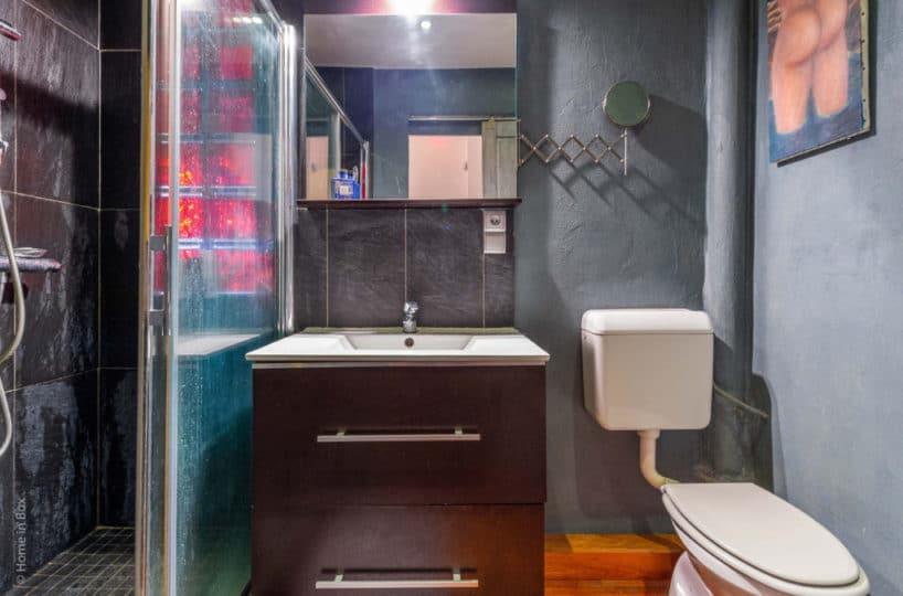 agence de la mairie charenton: 2 pièces 43 m² à vendre, salle d'eau avec grande douche, wc