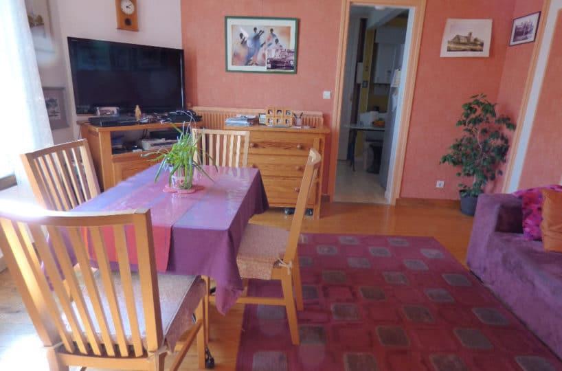 achat appartement alfortville: 2 pièces 45 m², séjour proche de la cuisine