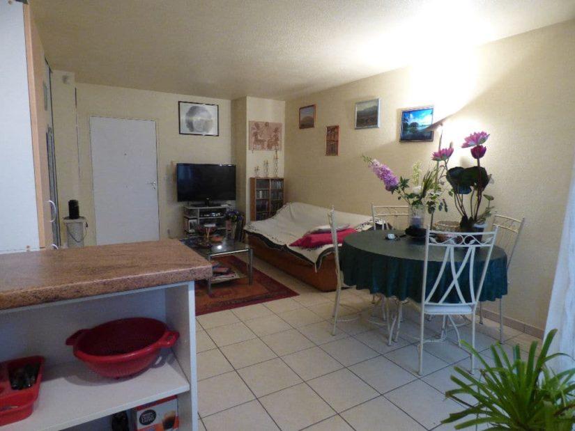 syndic alfortville: 2 pièces 45 m², entrée directe sur le séjour, terrasse, jardin