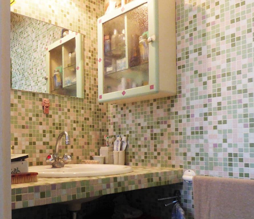 acheter a maisons alfort: 6 pièces, salle d'eau avec faïence au mur