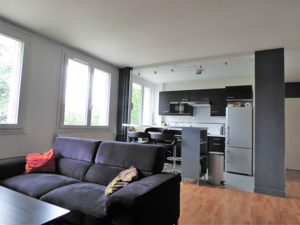 vente appartement 2 pieces alfortville: 2 pièces 46 m², belle pièce de vie avec cuisine américaine