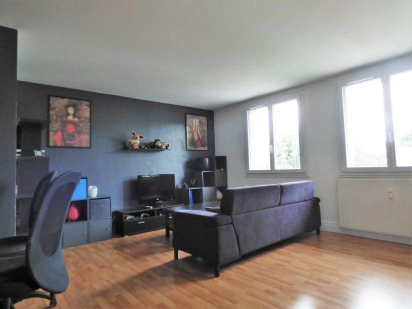 vendre appartement alfortville: 2 pièces 46 m², beau salon / séjour lumineux