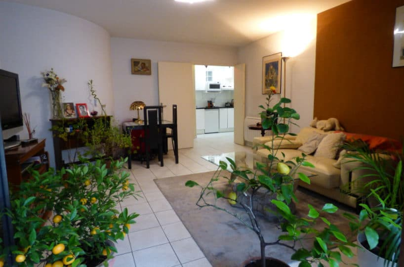 appartement à vendre charenton: 2 pièces 44 m², salon / séjour avec cuisine indépendante