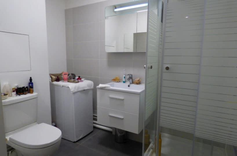 appartement à vendre à charenton: 2 pièces 44 m², salle d'eau avec douche, vasque / miroir, wc