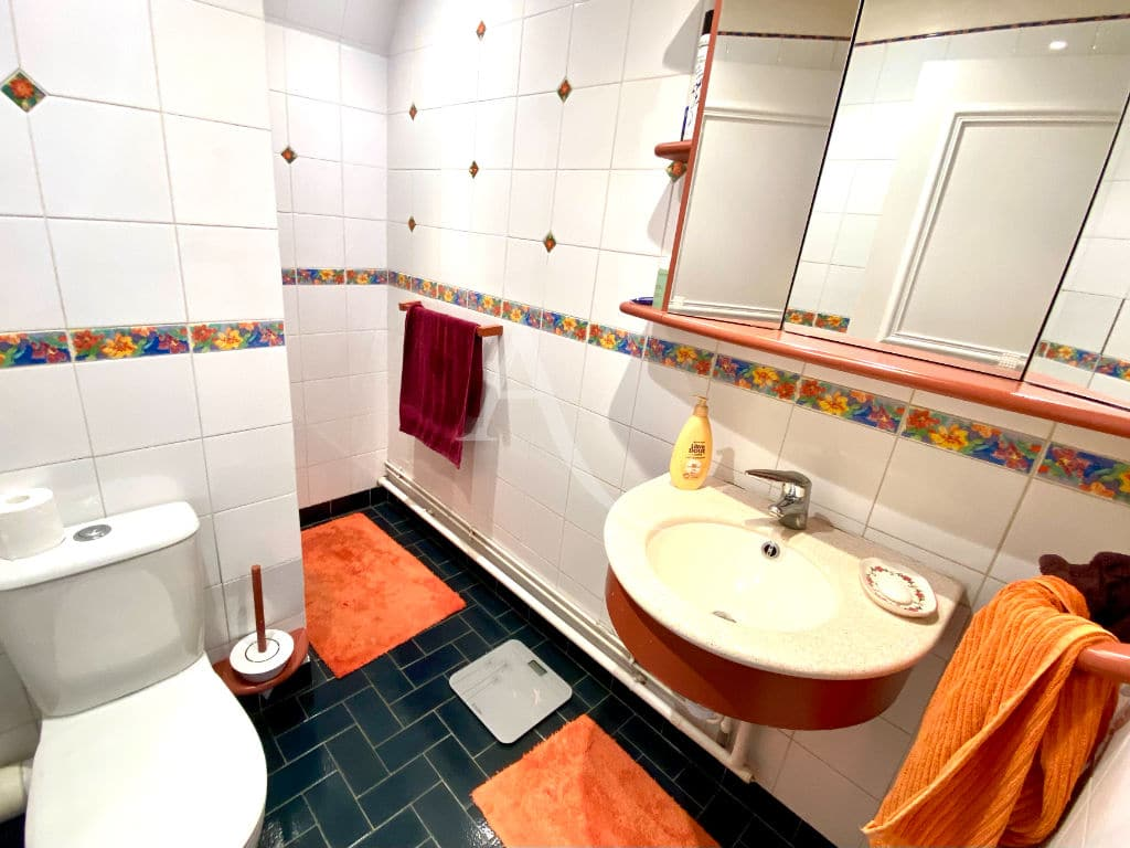 immo saint maurice: appartement 5 pièces 106 m², salle d'eau avec toilette
