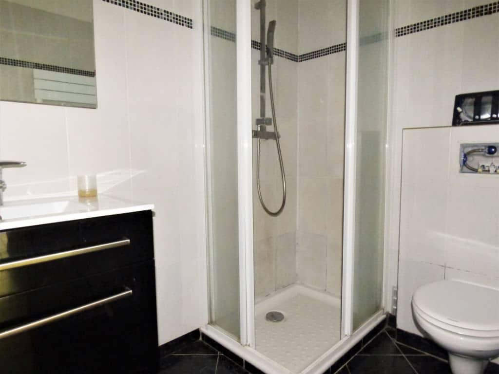 vente appartement maisons alfort: 2 pièces 30 m², salle d'eau avec cabine de douche, vasque et wc