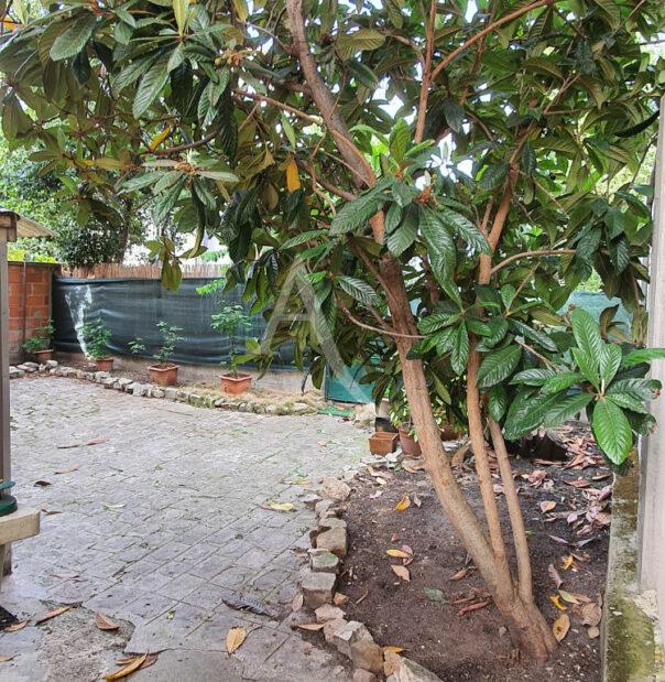 achat studio alfortville: 20 m², rez de chaussée jardin avec véranda, au calme, cave