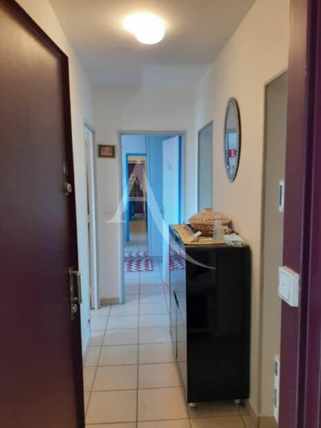 immobilier a maisons alfort: 3 pièces 54 m², belle entrée traversante, plafonnier