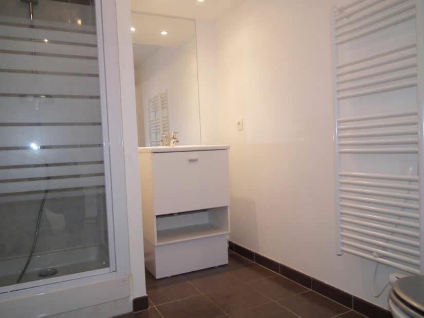 louer appartement à alfortville: 2 pièces 40 m², salle d'eau avec cabine douche, toilettes et sèche serviettes